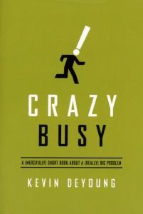 Crazy Busy book