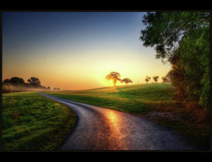 road-at-sunrise-laser-lovelyness-amplificated-saturated-editing-of-radiance