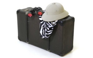 packing_iStock_000016266517Large